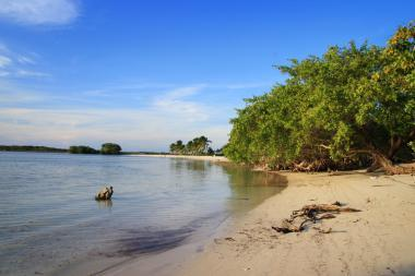 Příroda na Kubě