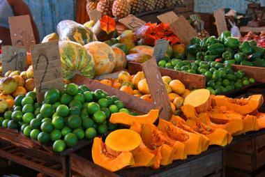 Výběr ovoce na ostrově Kuba